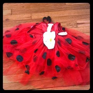New with tags pottery barn ladybug costume